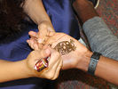 <p>A close-up of the henna painting on a student's hand.<br></p>