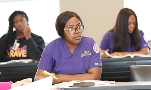 Alcorn's School of Nursing ranks No. 1 on NursingSchoolHub.com's Top 25 list for HBCU nursing programs