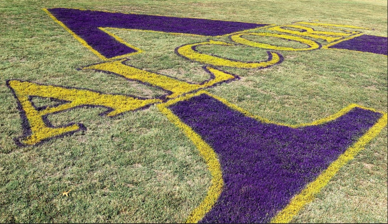 Alcorn State Athletics logo painted in the grass on the football field